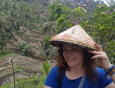 Bali – Tegallalang Pirinç Tarlaları